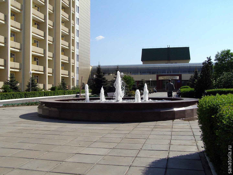 Официальный сайт центр реабилитации волгоград отзывы загребский центр реабилитации
